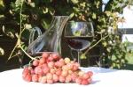 Comment carafer un vin et pourquoi ?