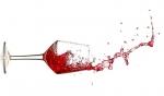 Composition et détection des principaux défauts du vin
