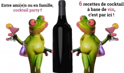 Quel cocktail faire avec du vin ?